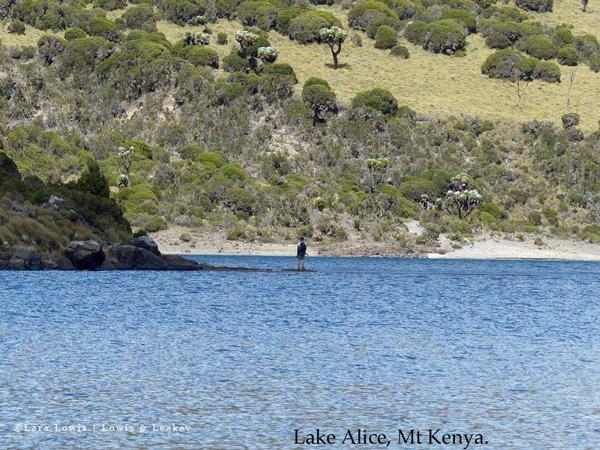 Lake Alice, Mt Kenya